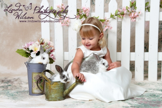 live bunny spring mini sessions