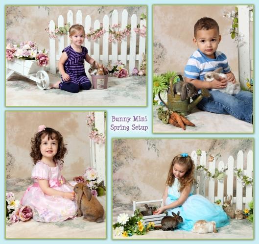 baby bunnies spring setup